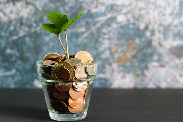 Savings-Earnings